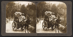 A hill-country 'Ekka' with passenger and baggage, coming from Cashmere to Murree, India
